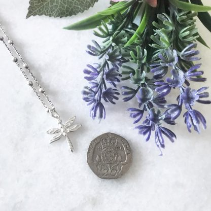 Sterling Silver Dragonfly Necklace on Bobble Chain to Scale