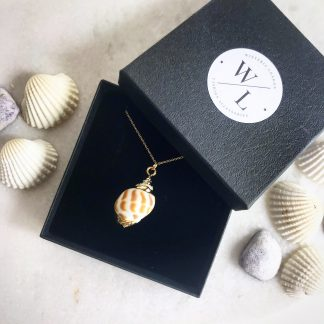 Mira Gold Natural Conch Shell Necklace