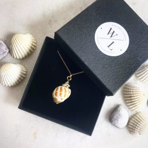 Mira Natural Conch Shell Necklace